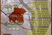 Thơ Tranh: Ngày Về Của Chiếc Lá Điêu Linh