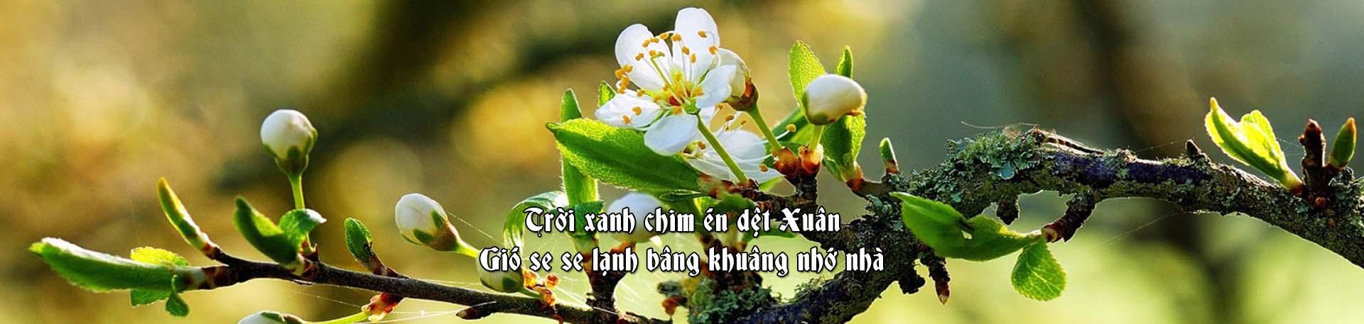 HDT-banner-spring